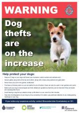 Dog Thefts